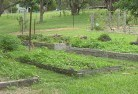 Ainslie ACT Sustainable landscaping 19