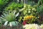 Ainslie ACT Sustainable landscaping 3