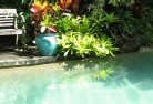 Ainslie ACT Swimming pool landscaping 3